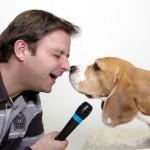 MARTIN RÃœTTER Hund-Deutsch | Deutsch-Hund ... Die Show