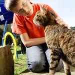 3 Tage Ferienspiele mit Hund und Katze