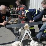 2. Altkreismeisterschaft im Holz-Dreikampf sucht Teams