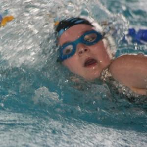 Schwimmsport im Braker Gartenhallenbad