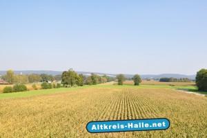 In einigen Jahren verläuft von links nach rechts die A33 Trasse, zur Rechten entsteht der Ravenapark das neue Industriegebiet am Autobahnzubringer Schnatweg in Halle/Künsebeck