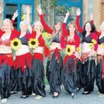 Am kommenden Sonntag, 26. August, startet rund ums Haus Werther das große Sonnenblumenfest