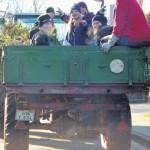 26 Kinder und Jugendliche beteiligten sich an der Tannenbaumsammelaktion