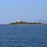 31. Juli: Internationaler Tag der Freundschaft - Der Mensch ist keine Insel