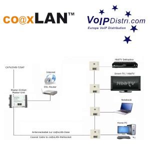 coaxLAN LAN TV Dose